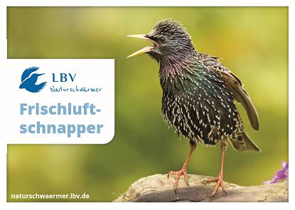 """Postkarte mit Star als Motiv und Schrift """"Frischluftschnapper"""""""
