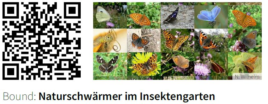 Actionbound Insektengarten
