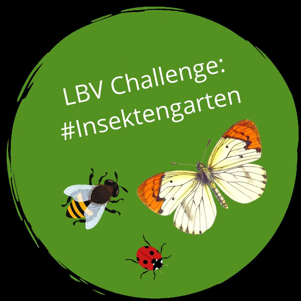 Challenge #Insektengarten