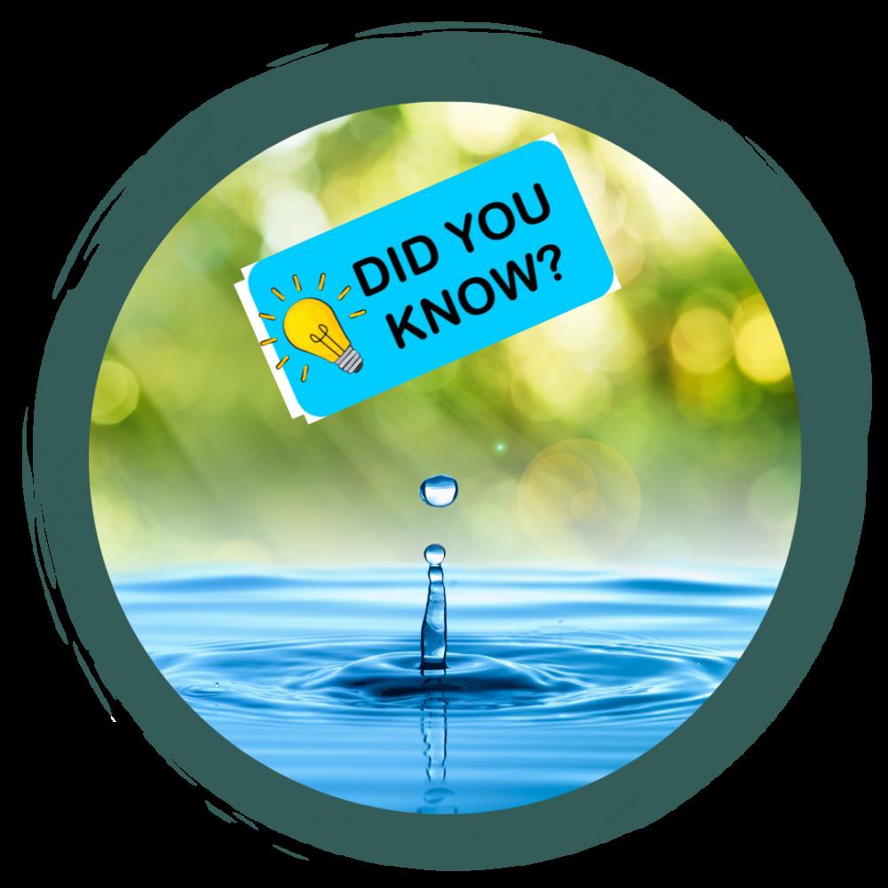 Fakten rund ums Wasser
