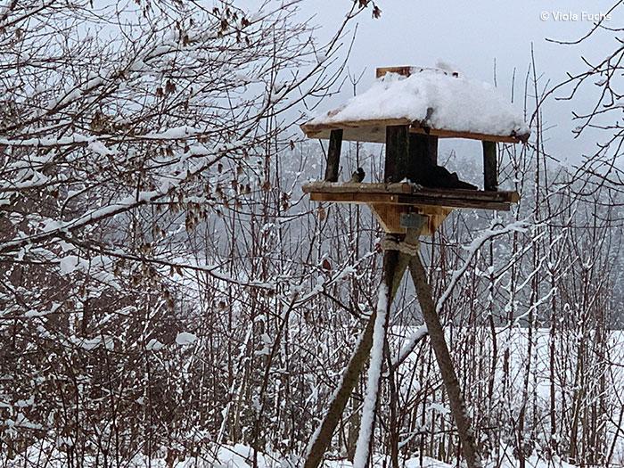 Futterhaus im Schnee