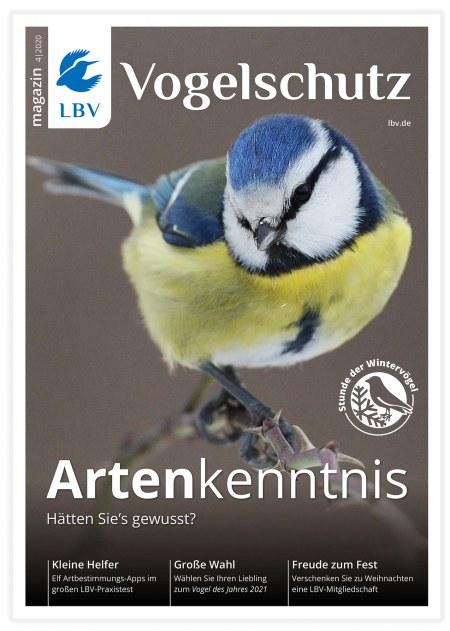 Cover LBV-Magazin