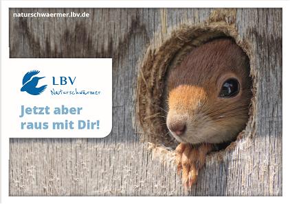 """Postkarte mit Motiv Eichhörnchen und Schriftzug """"Jetzt aber raus mit dir"""""""